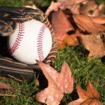fall-ball-910-year-old-division-1369240153-jpg